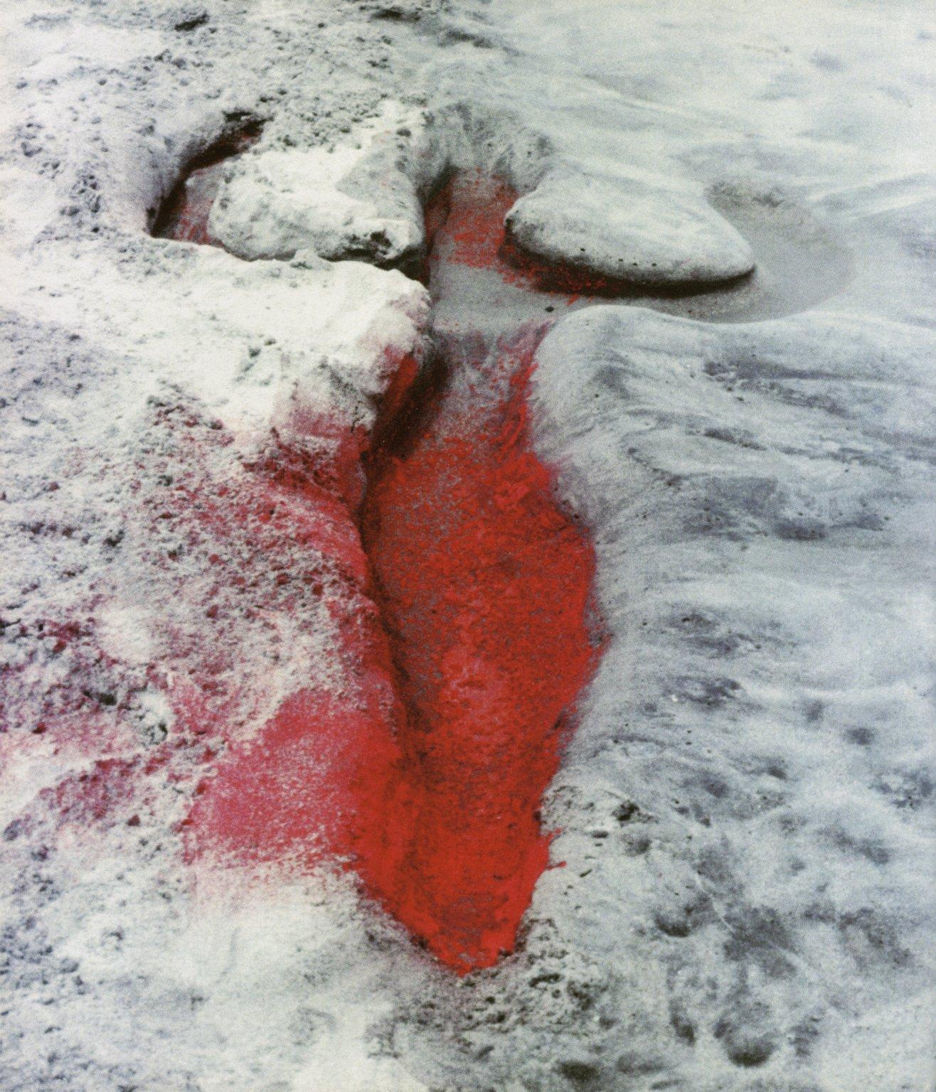 Title: Untitled from Silueta Series in Mexico Artist: Ana Mendieta Year: 1976 original slide; 1991 posthumous print Type: Photograph Materials: C-print on Kodak Professional paper