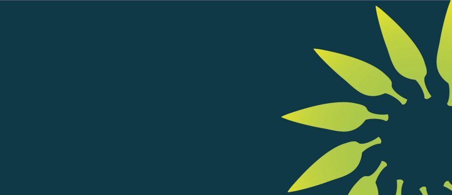 background bar with green starburst logo