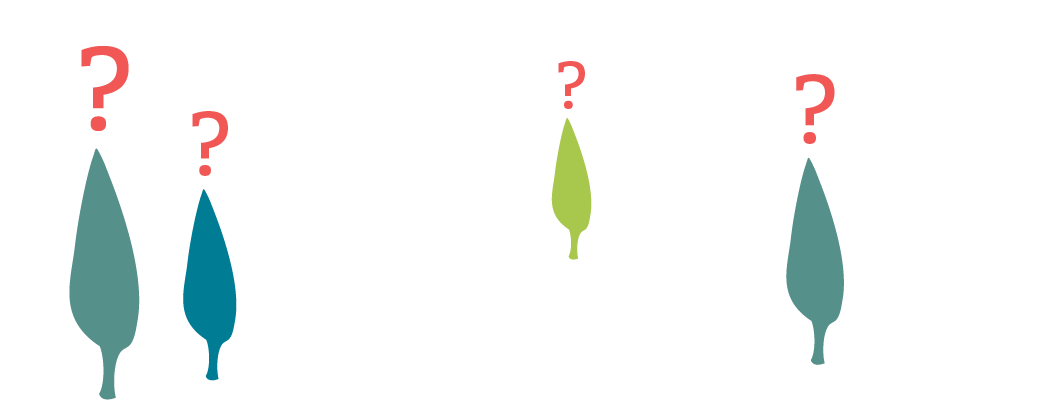 illustration of blue and green trees with red question marks above