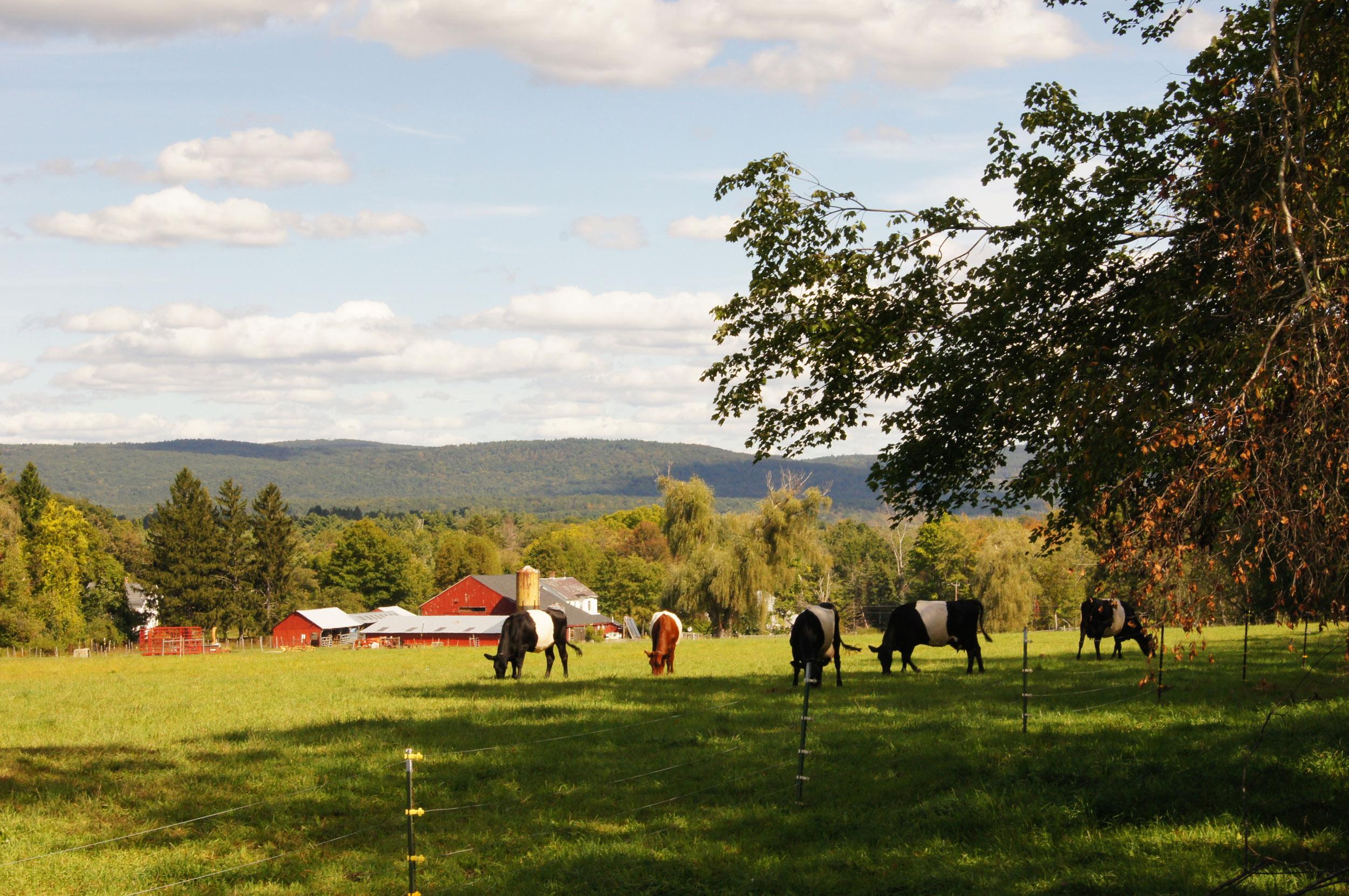 Food, Farm, and Sustainability