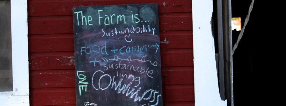 What does the farm mean to you?