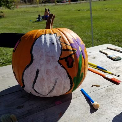 pumpkin with cartoon bird painted on it