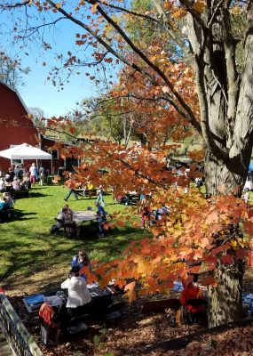 red barn, people at festival, sugar maple