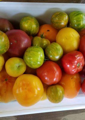 box of heirloom tomatoes