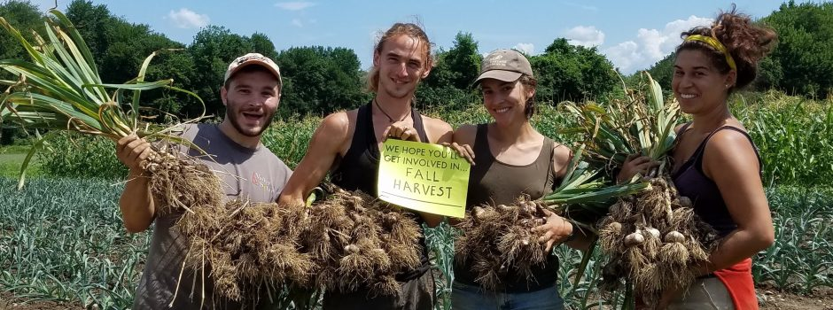 group of 4 people in a field holding garlic bunches and a sign that says