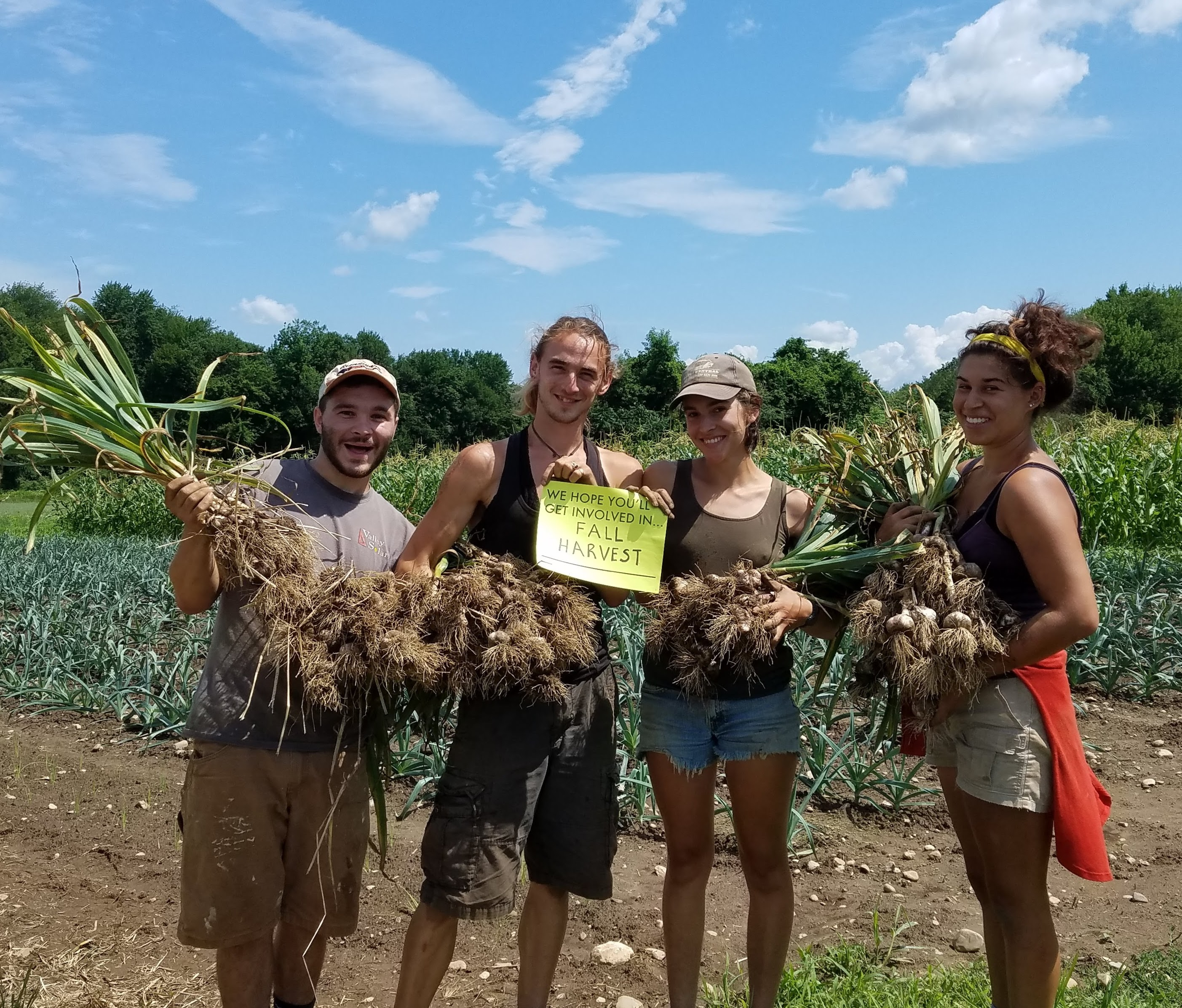 "group of 4 people in a field holding garlic bunches and a sign that says ""We hope you will jget involved infall harvest"""