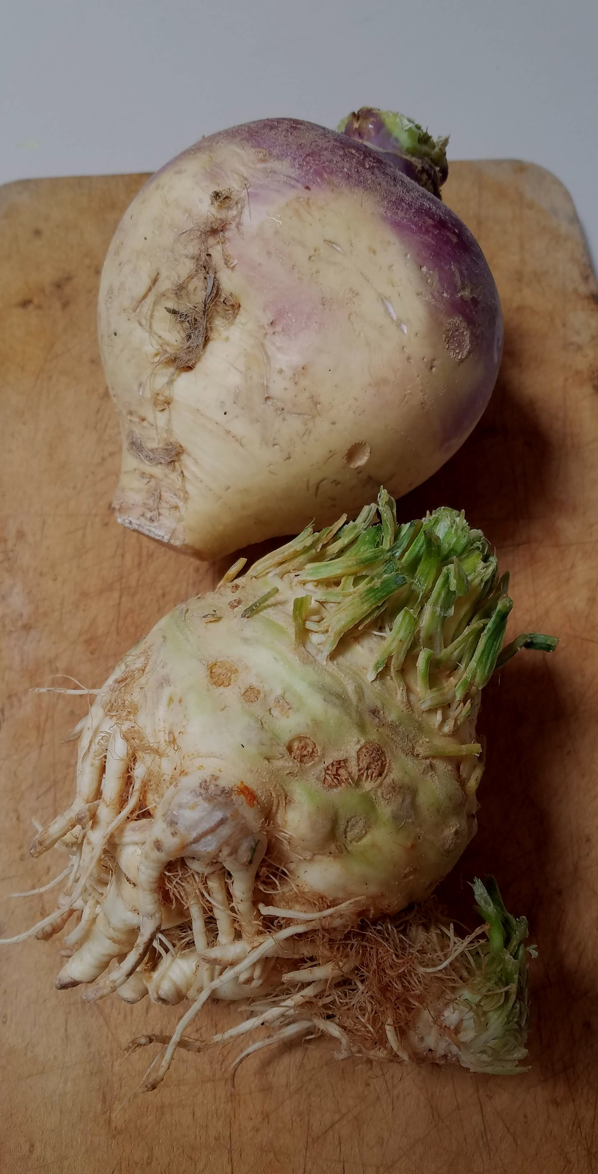 rutabaga and celeriac