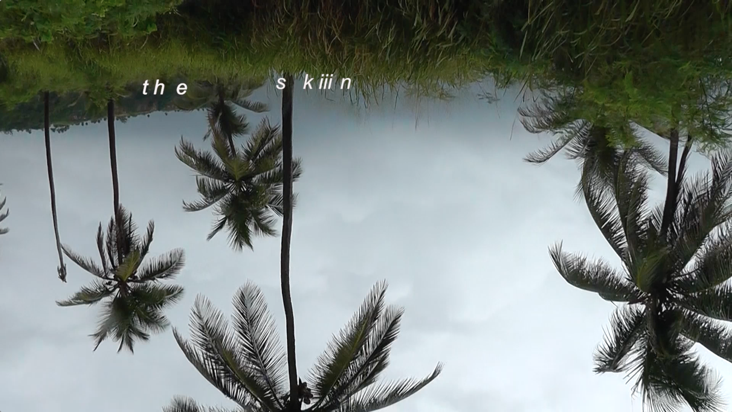 Still from sweat/tears/sea, upside down palm trees with text