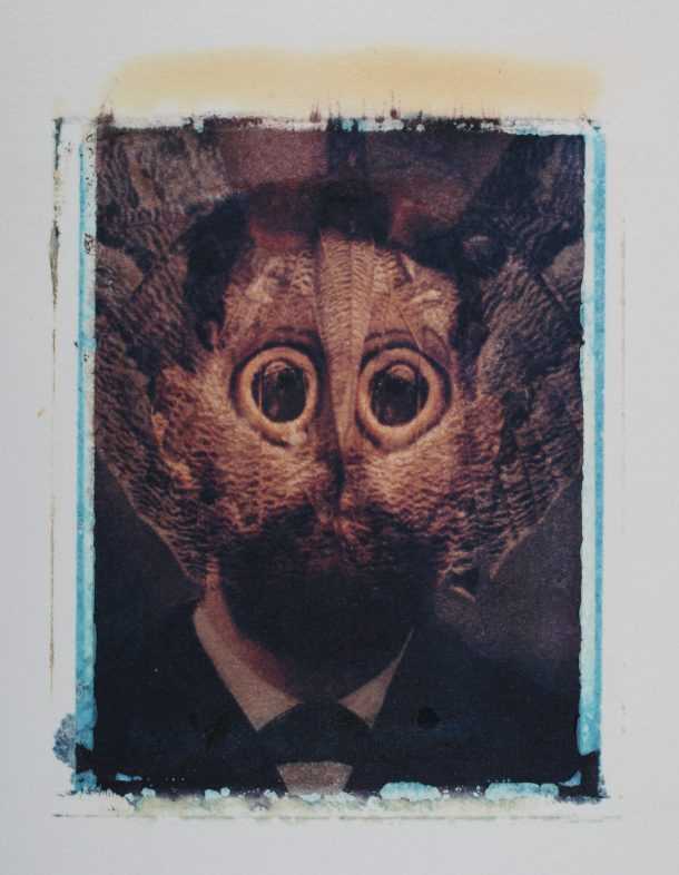A transferred photograph of man over whose face is overlaid a photograph of a pinned moth.
