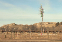 In The Path of Resistance: Justice Beyond the Keystone XL Pipeline
