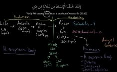 evolution, Kamran Ahmed