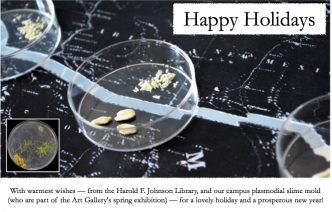 holiday greeting card from the library with photo of slime mold