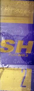 zc_push_n2_001